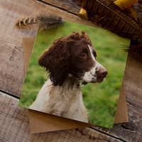 PSBC004 Did you call - Spaniel greeting card