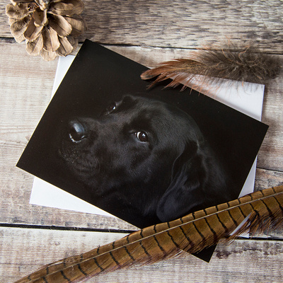 Black Lab greeting card ES