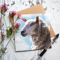 FYA004 - Sheep against a summer sky, greeting card