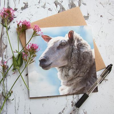 FYA004 - Sheep against a summer sky, greeting card
