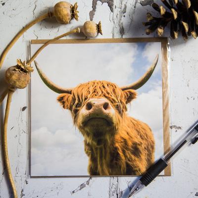 FYA001 Highland Cow Greeting card