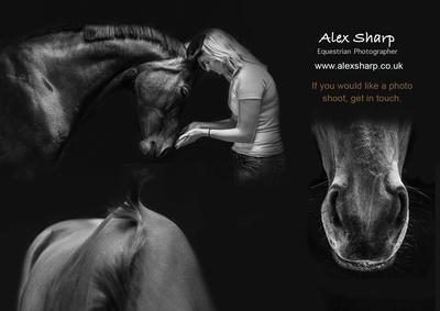 Alex Sharp  Equestrian Photographer uk
