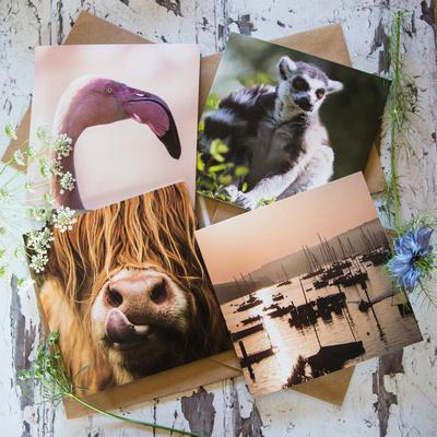 Alex Sharp Photography Greeting cards 3