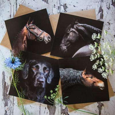 Alex Sharp Photography Greeting cards 1