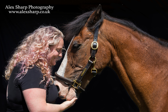 horse photographer 5