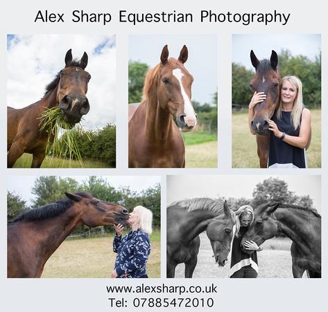 Equestrian Photographer Alex Sharp